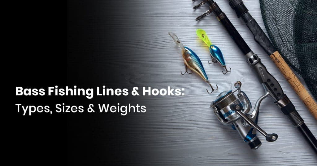 Bass Fishing Lines & Hooks: Types, Sizes & Weights