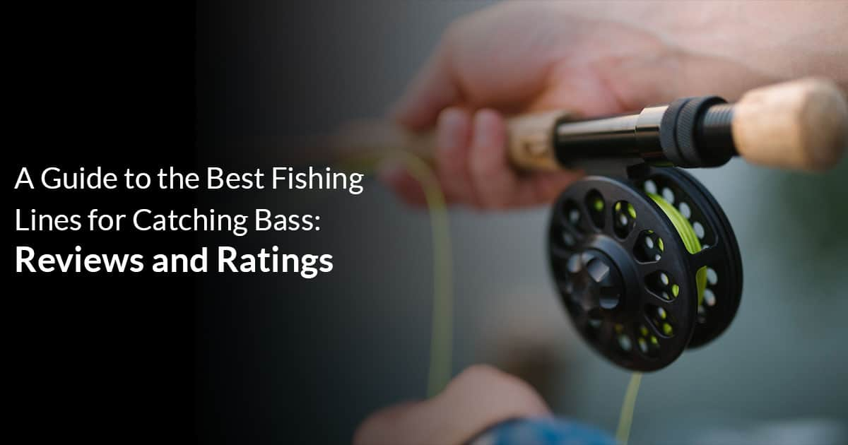 Best Fishing Lines for Catching Bass
