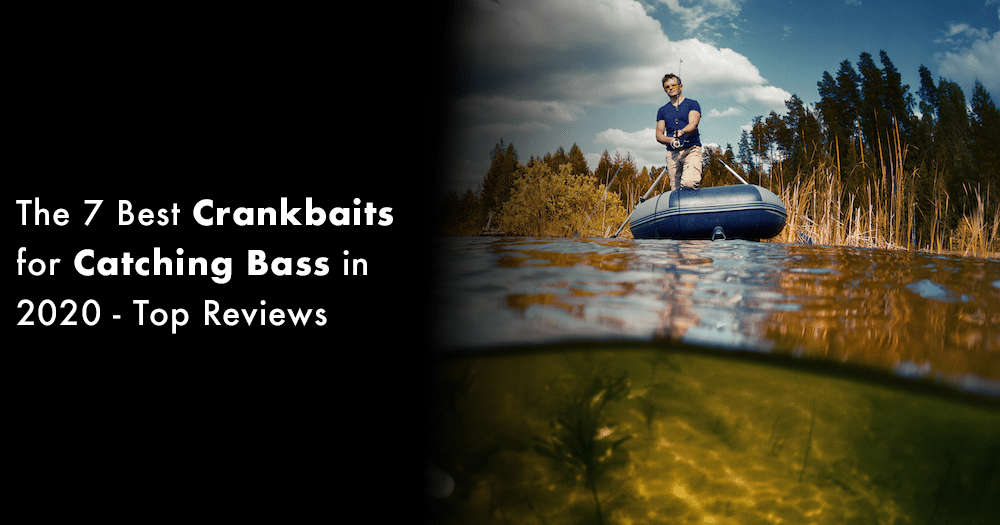 Crankbaits for Catching Bass in 2020