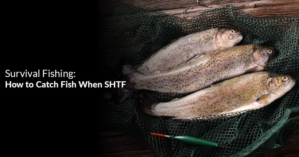 How to Catch Fish When SHTF