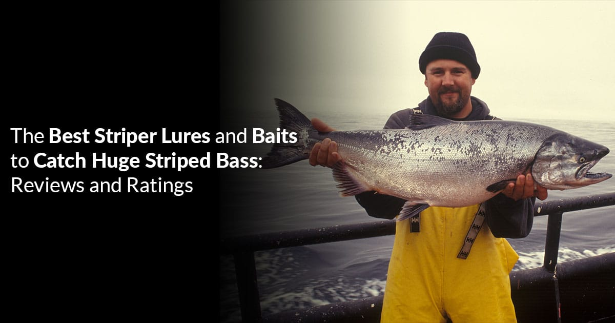The Best Striper Lures and Baits to Catch Huge Striped Bass