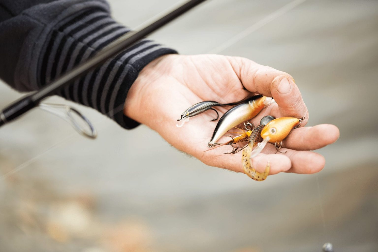 The Best Striper Lures and Baits