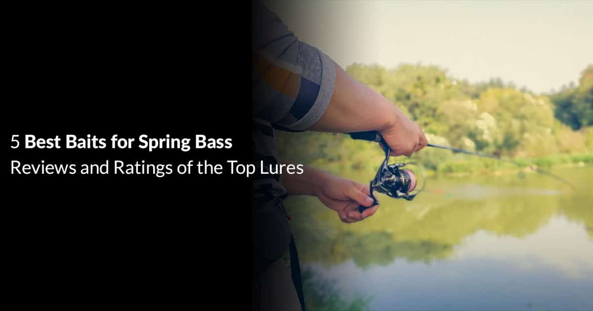 Best Baits for Spring Bass