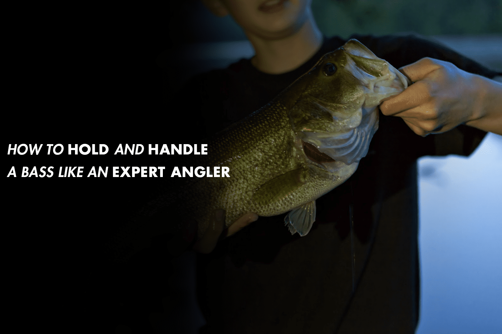 How To Hold and Handle a Bass Like an Expert Angler