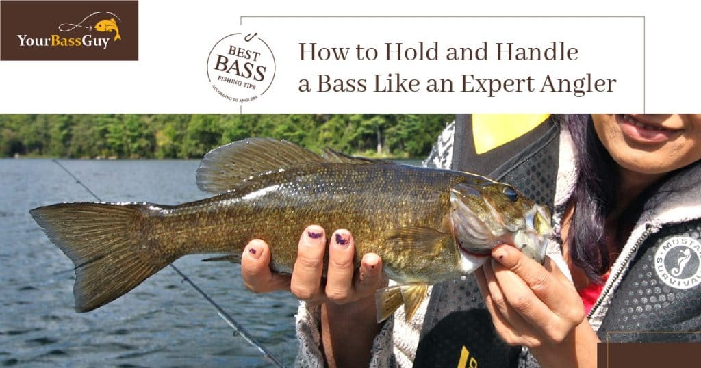 How to hold a bass