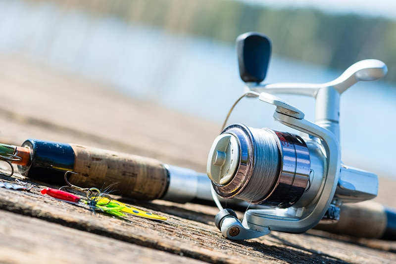 Spinning Rod and Reel
