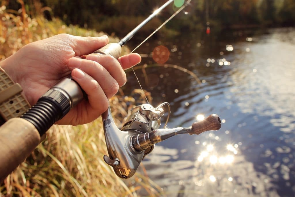 Baits for Catching Bass This Fall Season