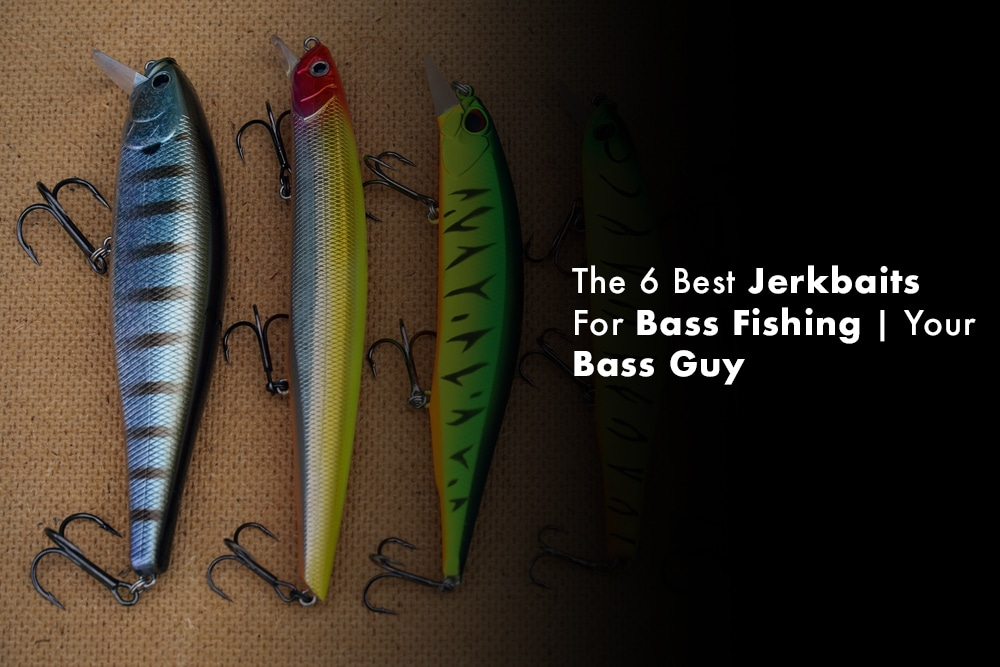 The 6 Best Jerkbaits For Bass Fishing | Your Bass Guy