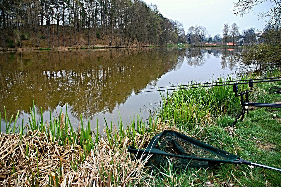Where to Catch and Find Big Bass
