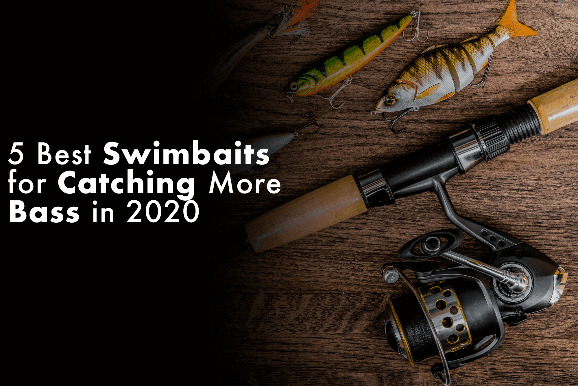 5 Best Swimbaits for Catching More Bass in 2020
