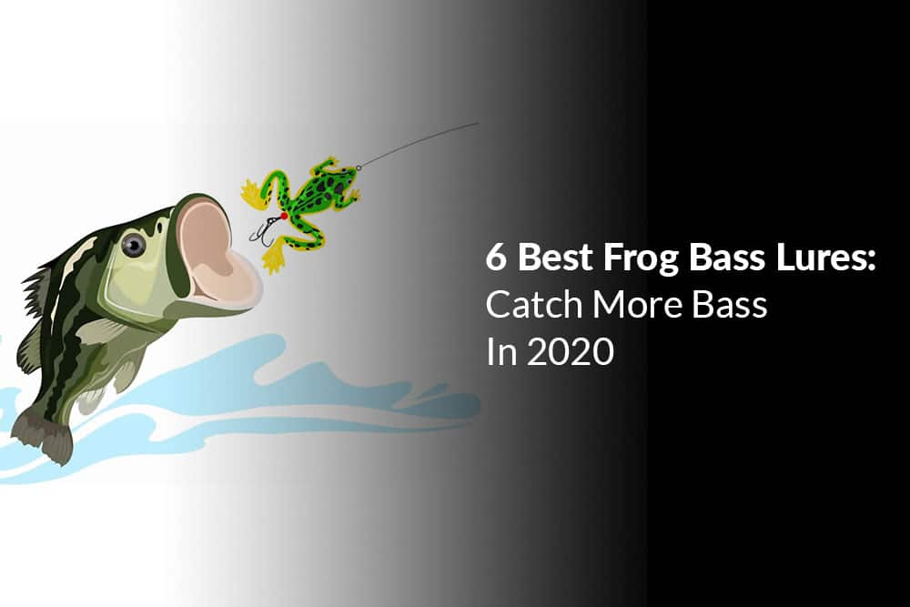Best Frog Bass Lures