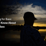 How to Fish a Jig for Bass: All You Need to Know About Jig Fishing For Bass