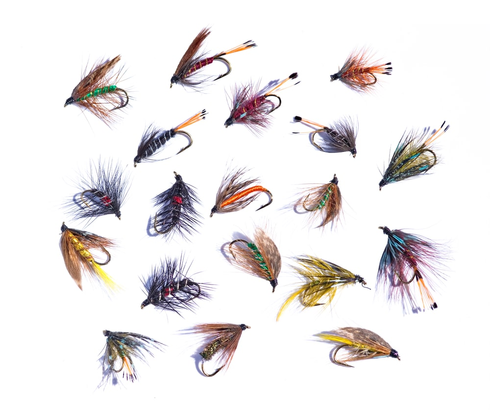 Best Fly Fishing Flies for Bass
