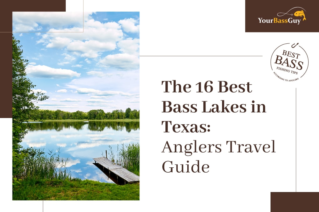 Best Bass Lakes in Texas