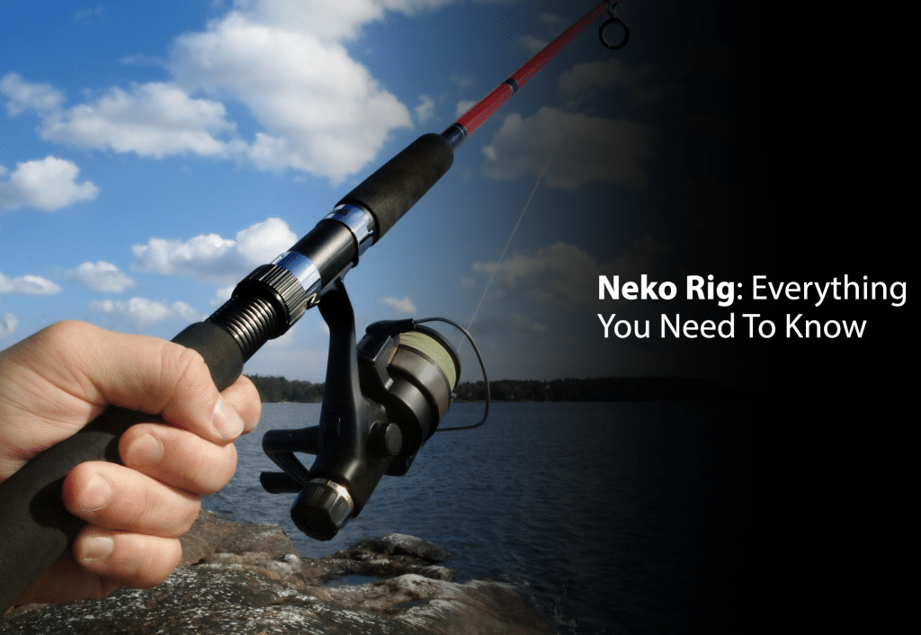 Neko Rig: Everything You Need To Know
