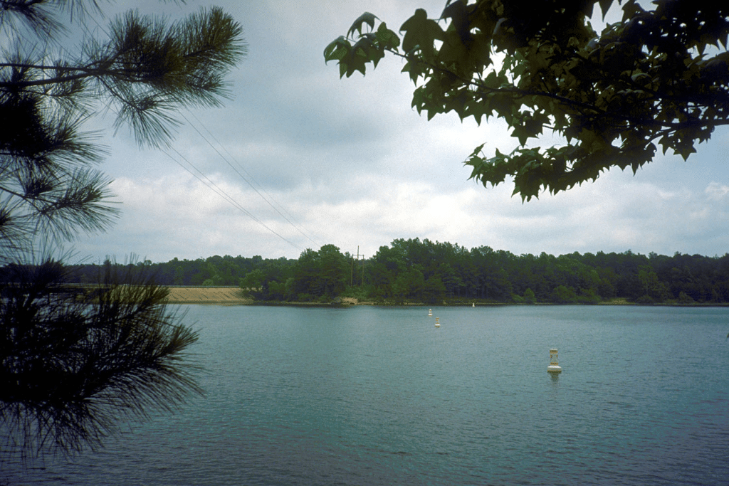 LAKE O' THE PINES