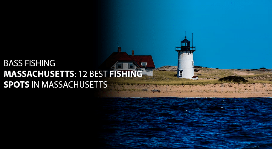 Bass Fishing Massachusetts: 12 Best Fishing Spots in Massachusetts