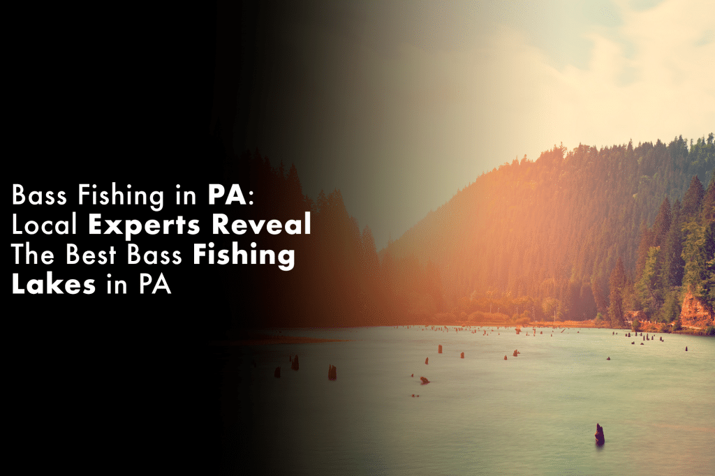 Bass Fishing in PA: Local Experts Reveal The Best Bass Fishing Lakes in PA