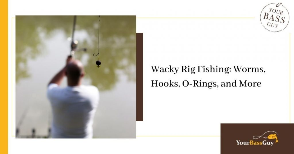 Wacky Rig Fishing for Bass
