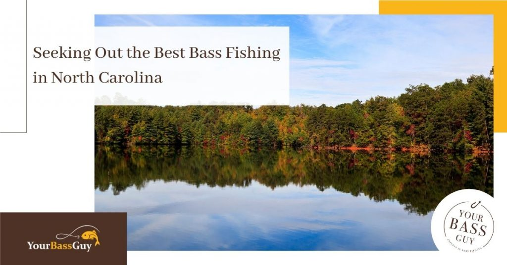 Bass fishing North Carolina