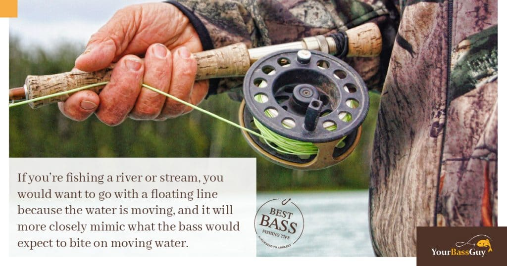 Fly fishing for smallmouth bass in rivers