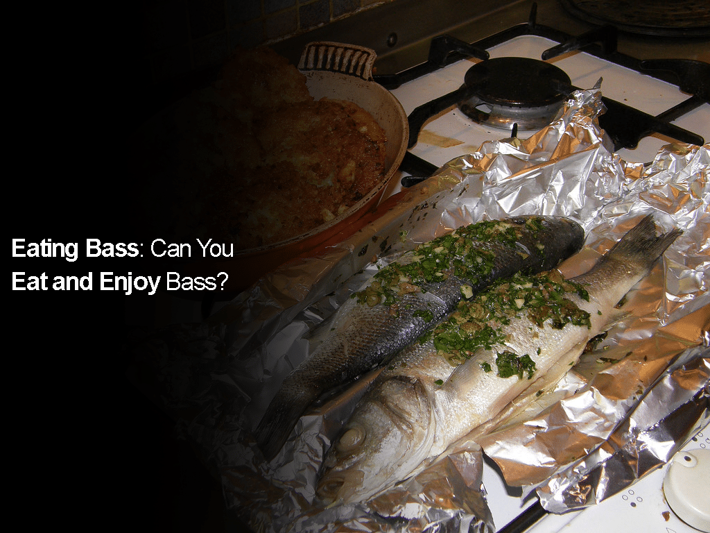 Eating Bass: Can You Eat and Enjoy Bass?