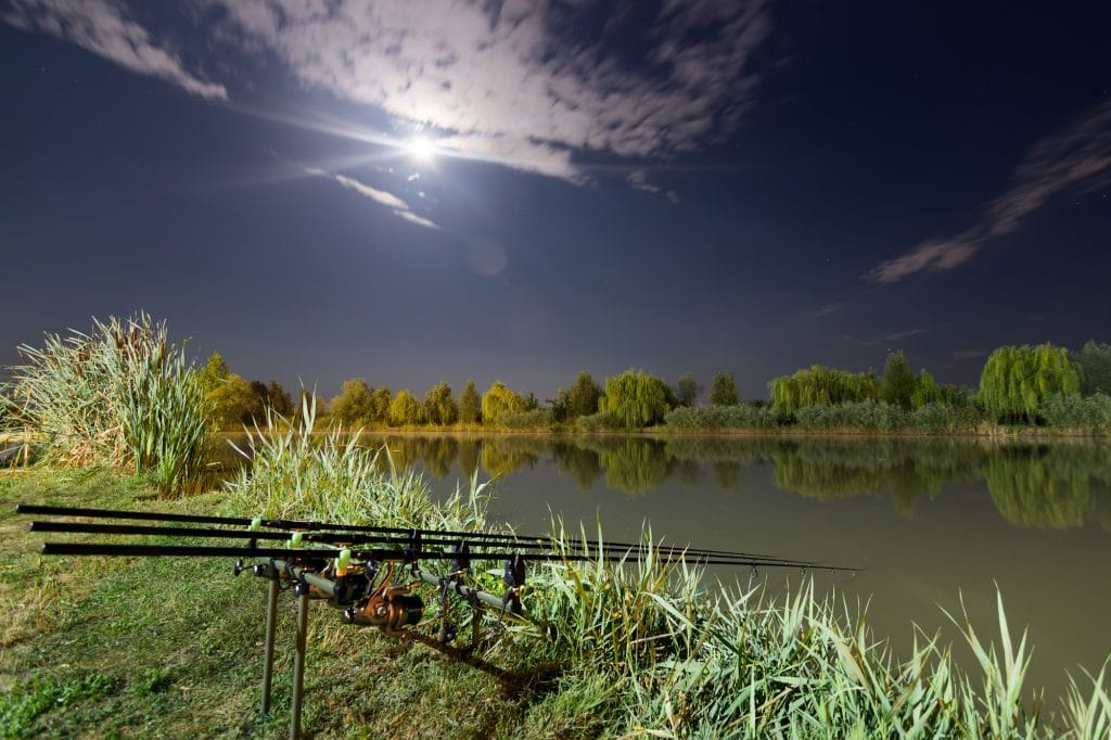 Night Fishing Lure