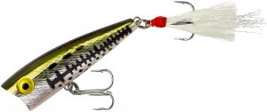 Rebel Lures Pop-R Topwater Popper