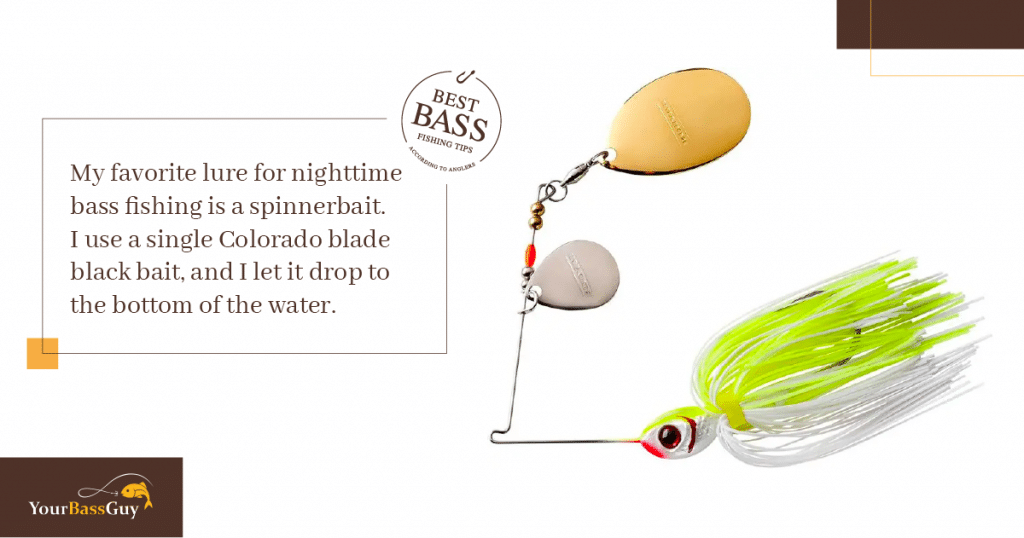 Bass fishing at night lures