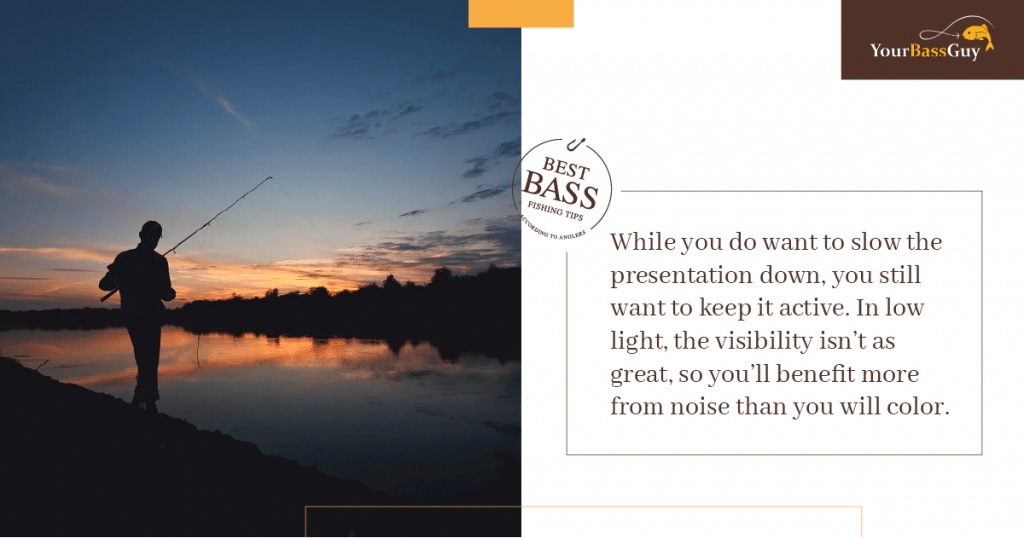 Night Bass Fishing Tips