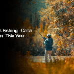 Fall Bass Fishing – Catch More Bass This Year