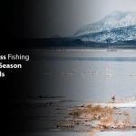 Winter Bass Fishing Tips: Bass Season Never Ends