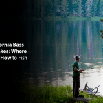 Best California Bass Fishing Lakes: Where to go and How to Fish