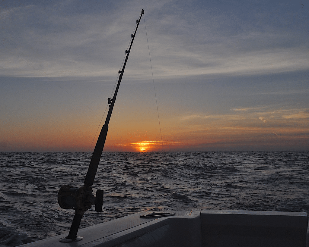 Fishing Rod at the sunset