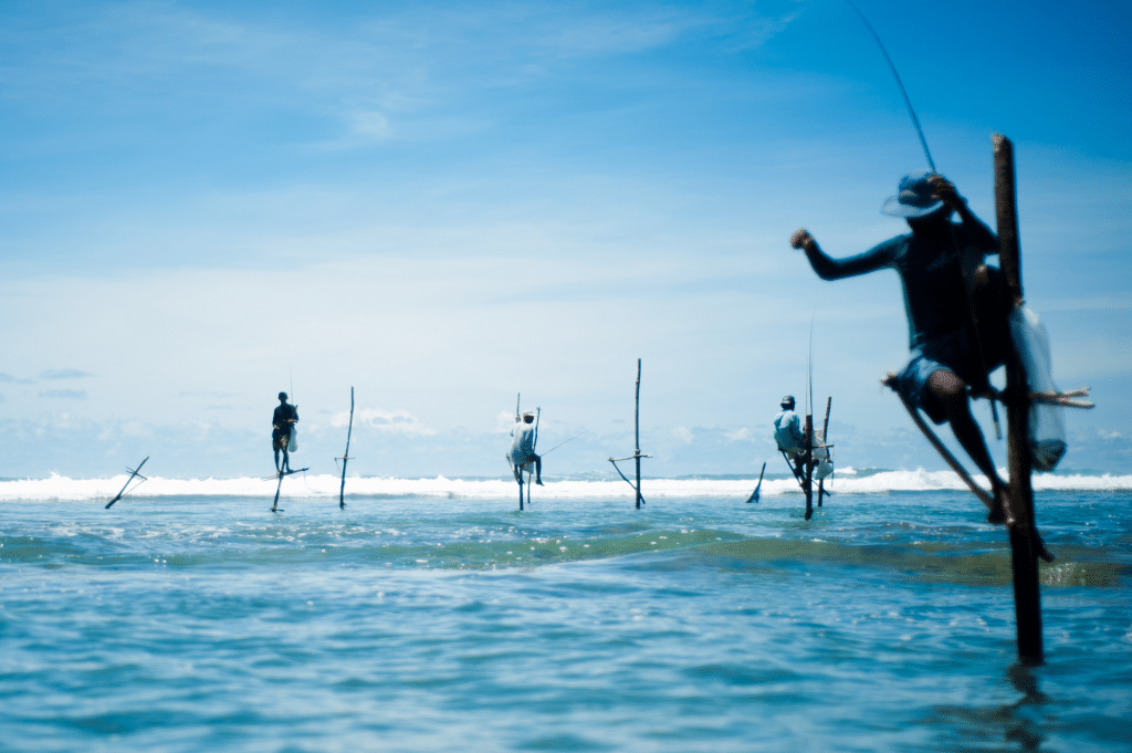stick fishing in sri lanka