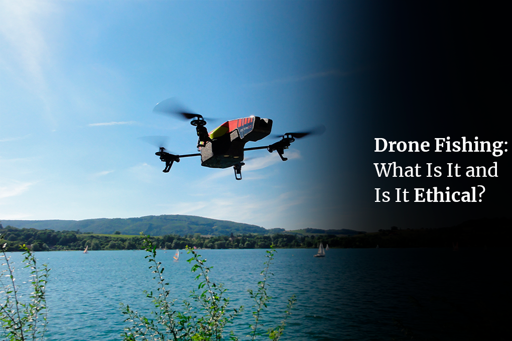 Drone Fishing: What Is It and Is It Ethical?