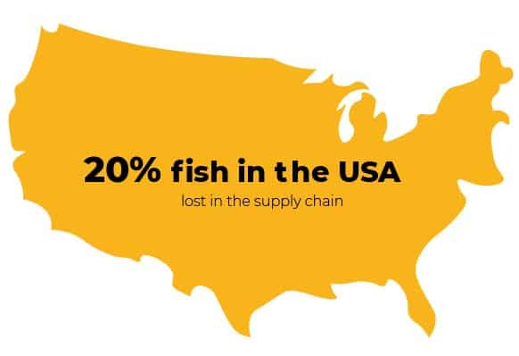 """Overfishing infographics """"20% fish in the USA lost in the supply chain"""""""