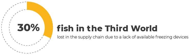 """Overfishing infographic - """"fish in the Third World lost in the supply chain..."""""""