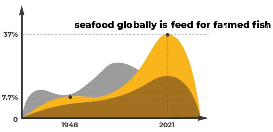 """Overfishing infographic - """"seafood globally is feed for farmed fish"""""""