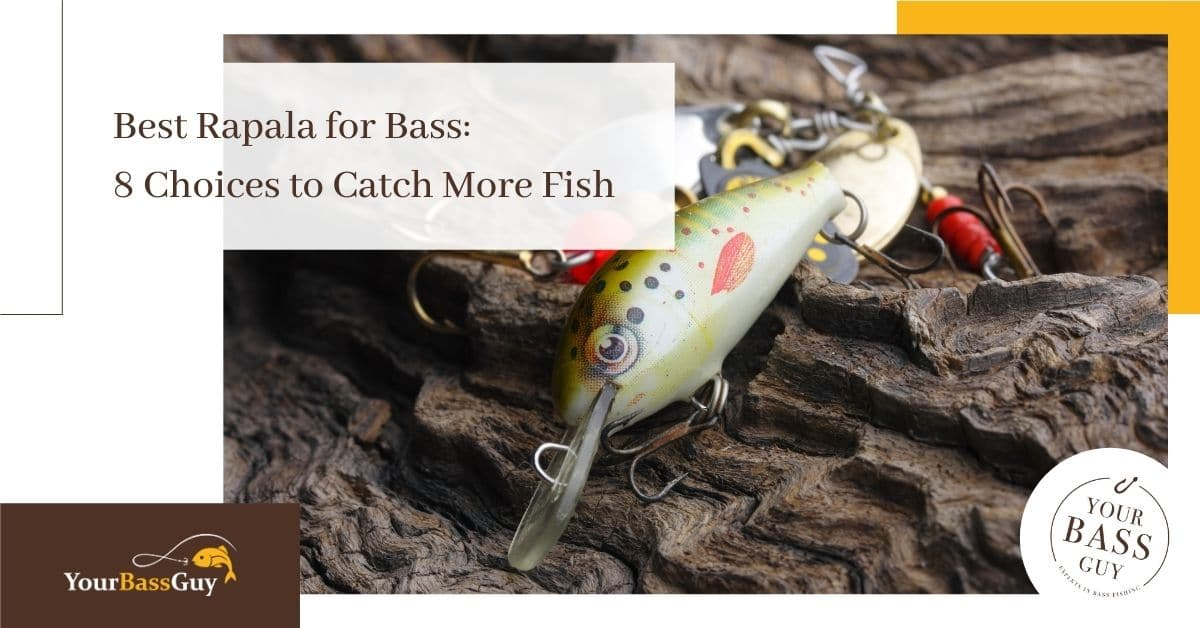 Best rapala for bass