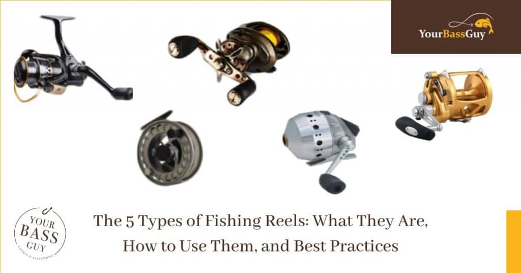 The 5 Types of Fishing Reels: What They Are, How to Use Them, and Best Practices