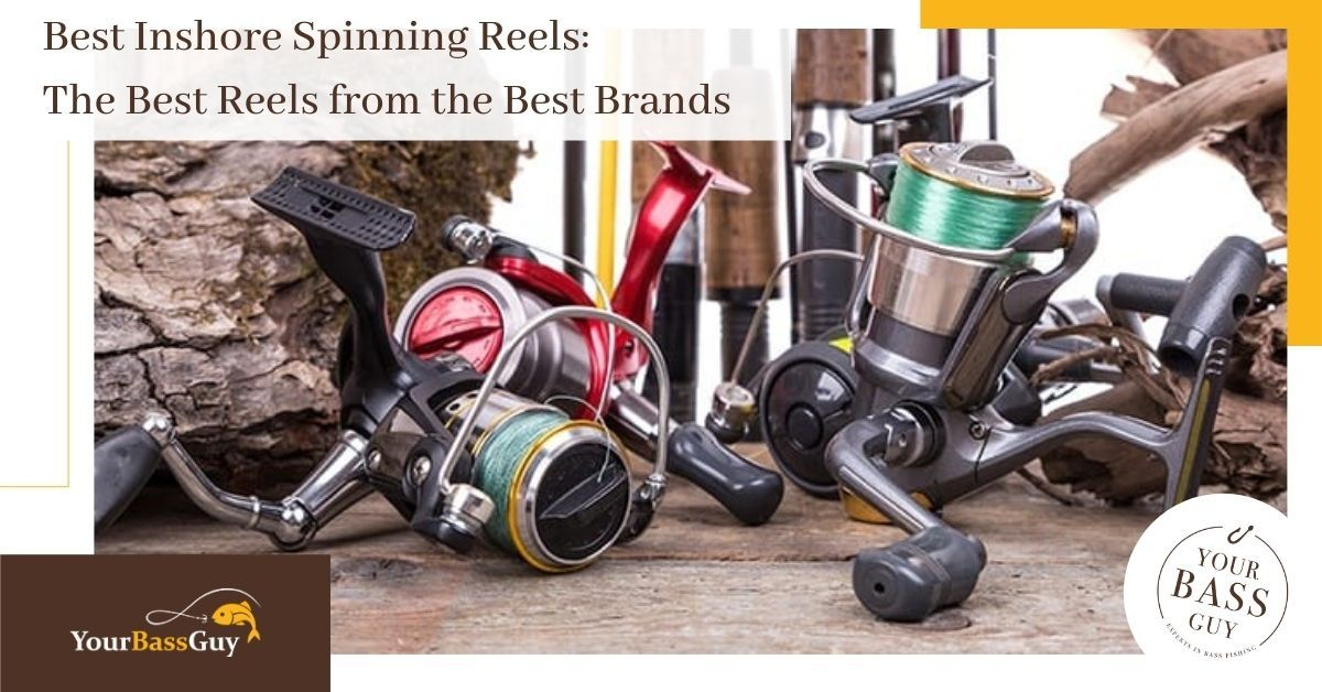6 Best Inshore Spinning Reels: The Best Reels from the Best Brands