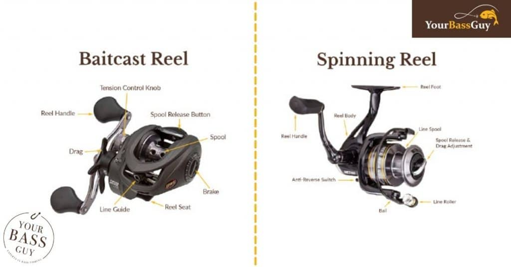baitcaster and spinning reels