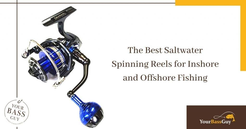 The Best Saltwater Spinning Reels for Inshore and Offshore Fishing
