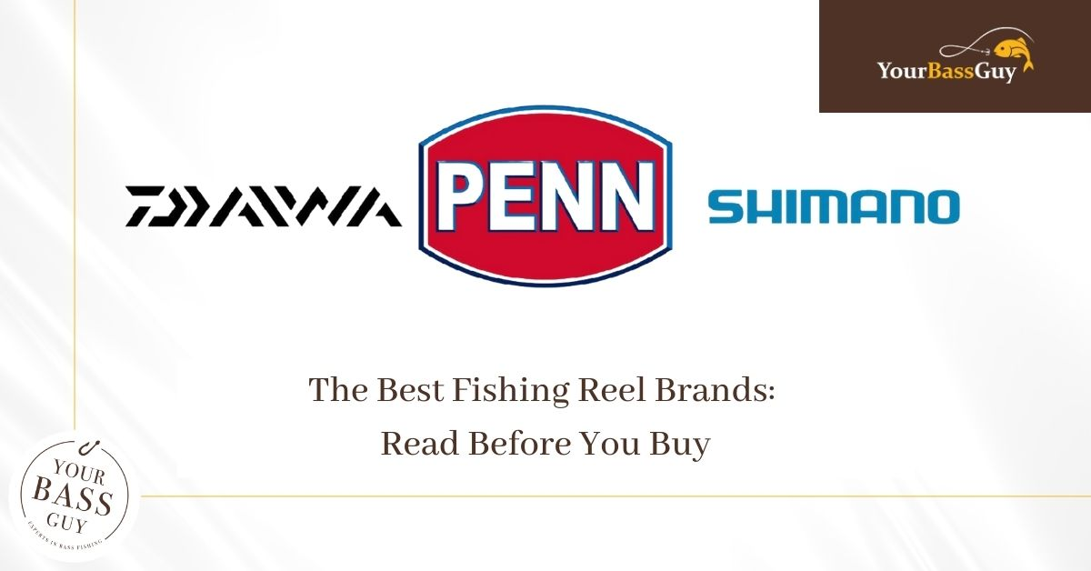 The Best Fishing Reel Brands: Read Before You Buy