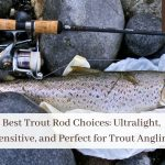 Best Trout Rod Choices: Ultralight, Sensitive, and Perfect for Trout Anglin'